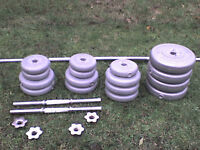 112 lb 51 kg Grey Spinlock Dumbbell & Barbell Weights