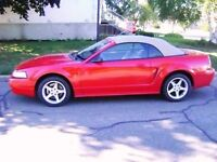 1999 Ford Mustang SVT COBRA Cabriolet Longueuil / South Shore Greater Montréal Preview