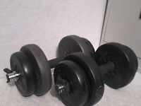 29 lb 13 kg Dumbbell Barbell Weights