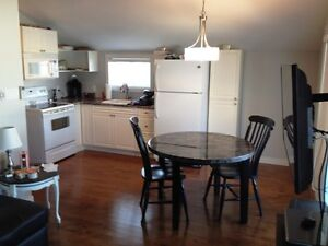 AVAIL APRIL 1ST FURNISHED FRESHLY RENOVATED 1BR ALL UTIL INCL