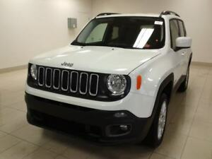 2017 Jeep Renegade North