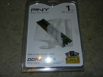 open PNY 1GB Dual Channel DDR2 667 MHz PC2-5300 Desktop Dimm RAM - 5300 667mhz Ddr2 Dual Channel