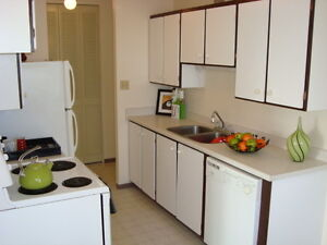 8th Floor Downtown 2 BR -Amazing river views!