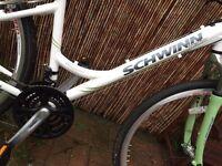 Ladies Schwinn Hybrid Bike