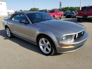 2008 Ford Mustang GT (Heated Seats, Shaker Audio System)