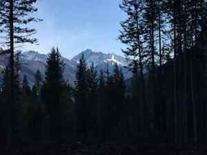 5 to 10 Acre Lots in the Blaeberry Valley Revelstoke British Columbia image 3