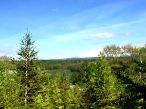 Beautiful lot with River Views - Bloomfield