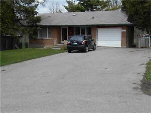 Spacious Bungalow minutes to 401 with large yard Avail. Sept 1