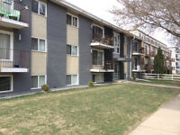 Modern upgrades to 1 bedroom Condo For Sale