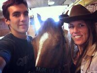 Pension pour chevaux :) ❤️
