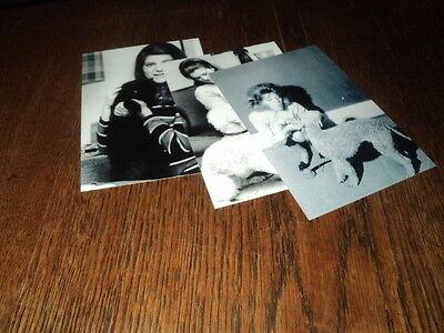 SHEILA LOT DE PHOTOS FORMAT 10*15 N&B - THEME 005 ANIMAUX - 3 PRISES