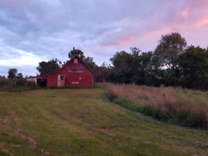 3.4 acres in Gananoque with Fixer Upper and Barn
