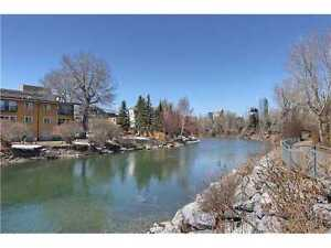 Free one Month - Erlton - Pet Friendly and Backing onto River