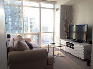 BRIGHT FURNISHED CONDO with lake & city views (3 month min.)