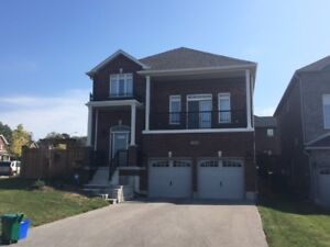 Barrie, Executive Style, 4 Bdrm, Custom Kitchen and more