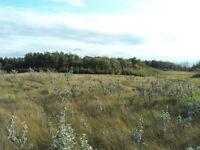 Mission Ridge Lot for Sale, 5.01 acres.