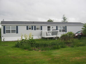 Three bedroom minihome with two deck & beautiful large treed lot