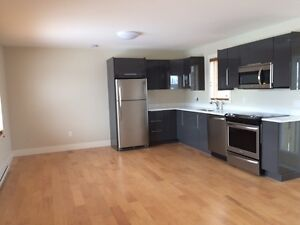 Newly Built Town House Available March 1, 2017