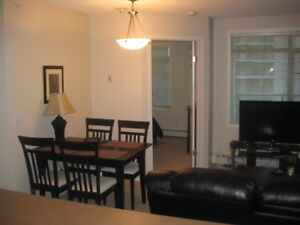 Discovery Pointe - Furnished 2 Bed