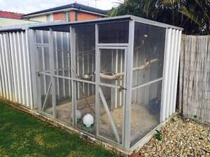 BIRD AVIARY WITH PARTITION Wetherill Park Fairfield Area Preview