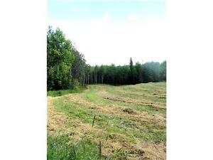 ATHABASCA ACREAGE W/ PRIVACY, NEWER WELL, POWER/GAS TO PROPERTY