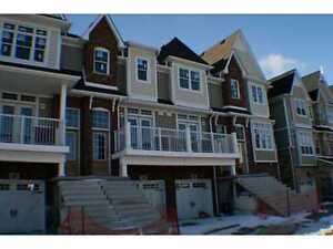 Beautiful Downtown St. Catharines Luxury Townhome