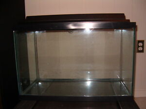20  GALLON AQUARIUM  WITH  SUPPLIES