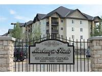 Top Floor 2 Bed 2 Bath Condo with View in Mackenzie Pt Airdrie