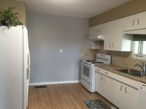 Bright 2 Bedroom on Mainfloor in Downtown Location