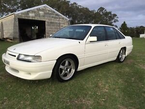 WANTED HSV or Sv Vn or Vp commodore. Collector St Agnes Tea Tree Gully Area Preview