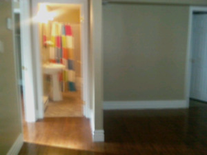 Apartment Available in Southlands
