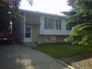 Renovated 3 Bed, 1 Bath Townhouse, SK Side