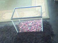Small Glass fishtank