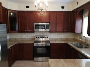 Great Codition Kitchen Cabinets and Counter Tops