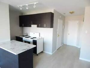 1 bedroom apartment next to Plamondon Metro, CDN