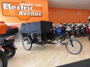 ebike 3 wheeler cargo electric cargo bike huge rear storage