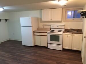 1 bedroom basement apartment (bayview and majormack)