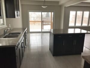 Brand new House --Thundering Water--Niagara Falls Furnished Opt