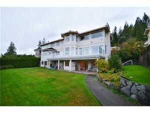 Lovely LOWERLEVEL suit in West Vancouver For Rent