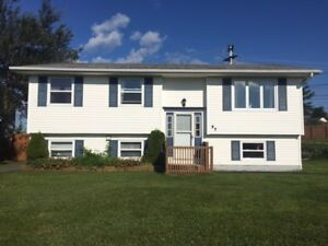 Three Bedroom House for Rent on Carlisle Drive