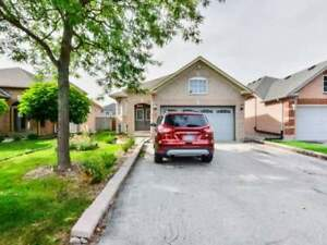 MUST SEE HOUSE FOR SALE