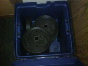 Weights (black polymer coating over concrete like interior)*