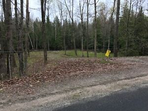Haliburton Real Estate Team-Lot on North Shore Road-$49,000