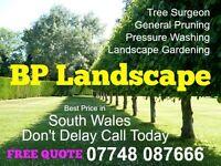 BP LANDSCAPE AND TREE SURGEONS