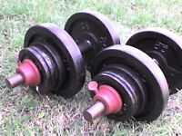 68 lb's 31 kg Metal Dumbbell barbell Weights and Bars - Heathrow