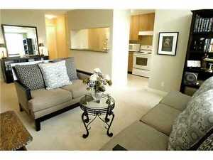 2 Bedroom Suite Vancouver - Kingsway & Boundary - Avail Nov 1st