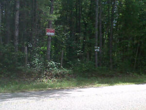 Wooded lot for sale