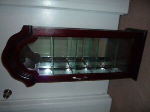 Hanging Wall Curio Cabinet $50 obo