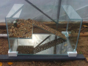 New Assorted Turtle Tanks for Sale