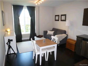 Free may rent luxury condo for rent in the heart of Osborne
